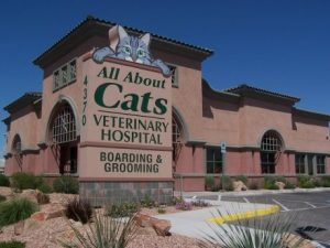 All About Cats Veterinary Hospital